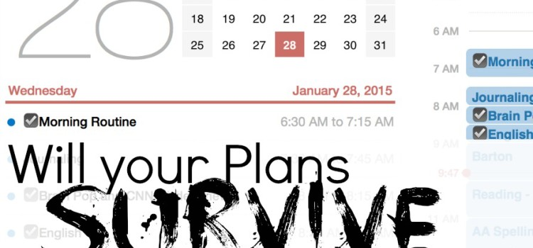 Will your Plans Survive February?