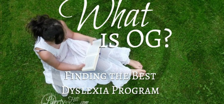 What is OG Dyslexia Remediation?